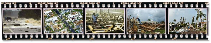 Filmstrip of photos by Suzanne Brawley