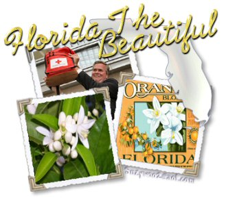 Florida The Beautiful montage of orange blossoms and Jeb Bush by Suzanne Fromtling/Brawley