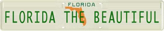 Special Florida The Beautiful license tag for promoting this site to assist the victims of the Florida hurricanes of 2004.